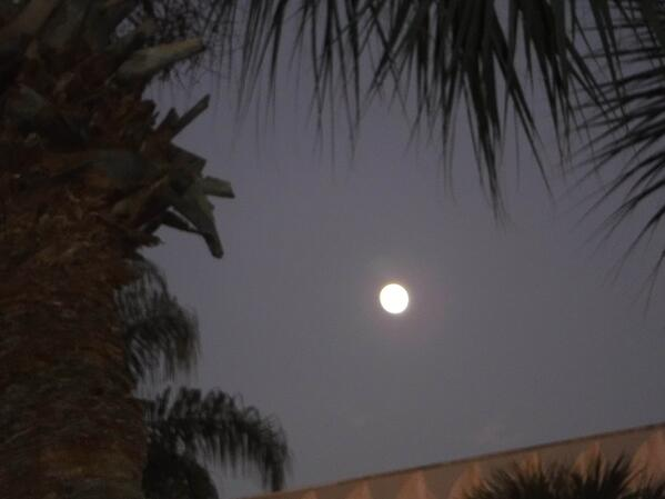 Moon over Clearwater Florida