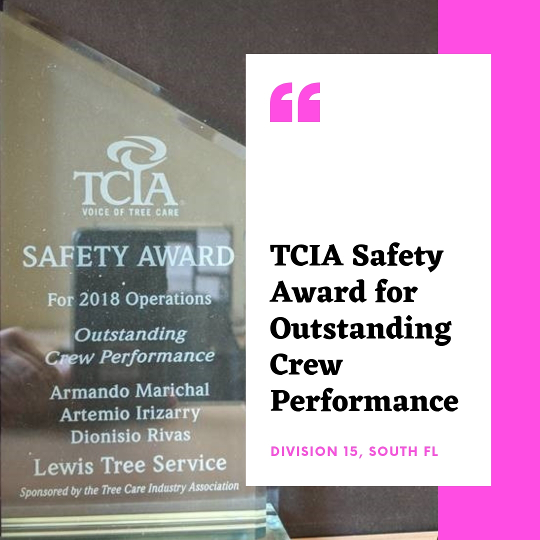 TCIA Safety Award Lewis Tree Service