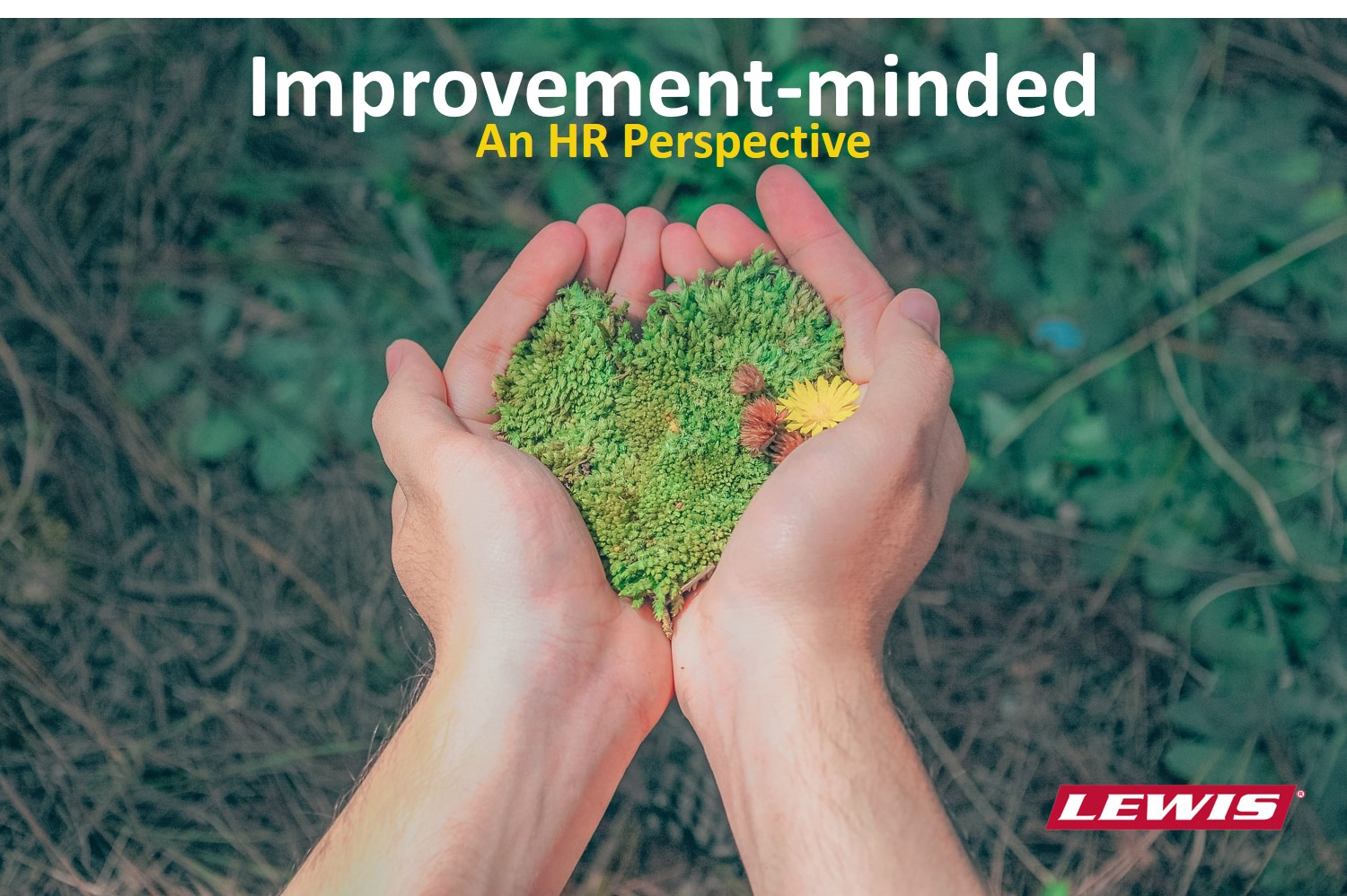 Improvement-minded in utility line clearance