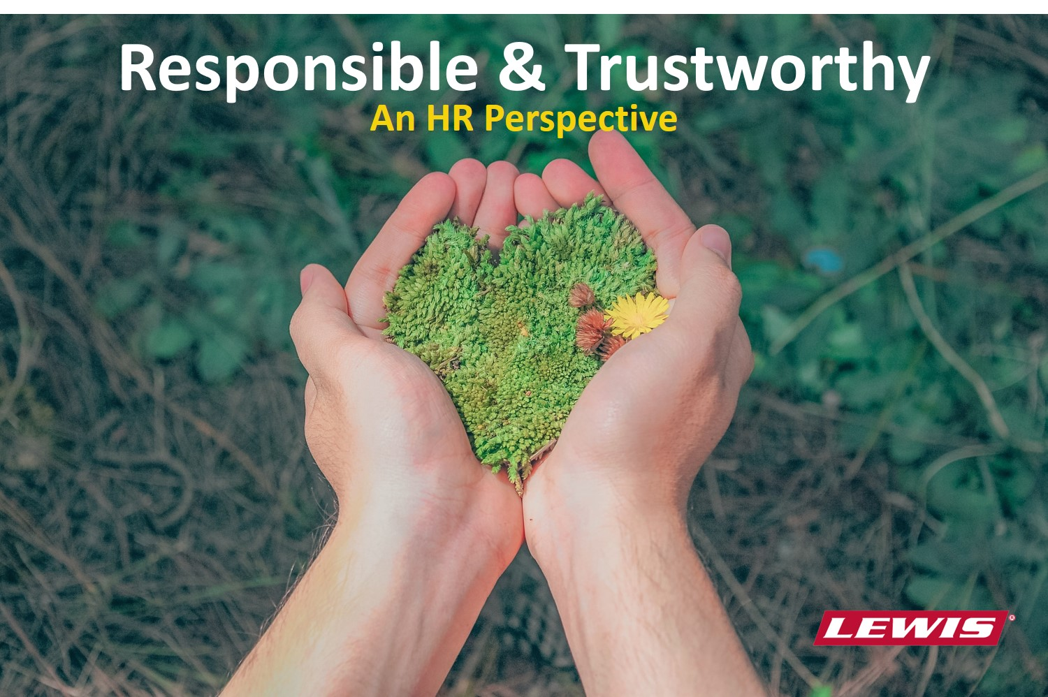 Responsible and trustworthy in utility vegetation management