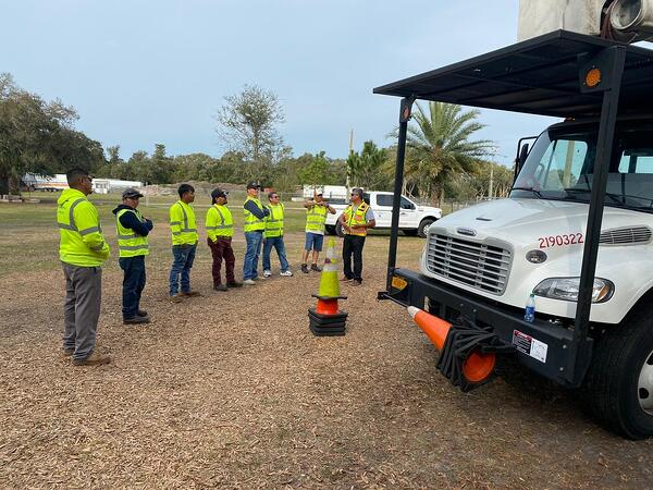 We Train Tree Trimmers in Florida
