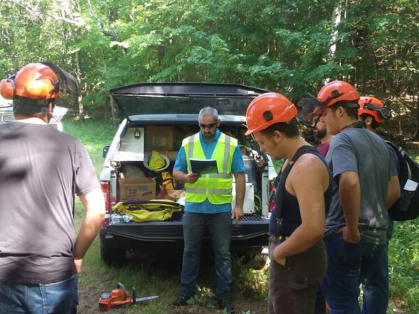 Vegetation management training for climbing